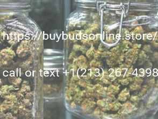 High Grade Medical Cannabis (2.1.3).2.6.7-4.3.9.8