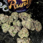 top-shelf-grade-aa-strains-available-small-0