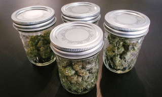 Buy Quality strains online Locally