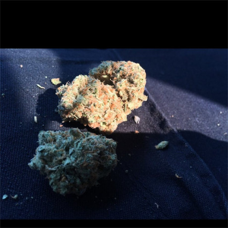 highest-quality-all-natural-medical-strains-available-text-1720-me-383-now-7352-big-7