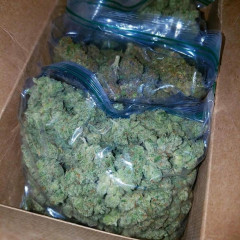 HIGH GRADE MEDICAL MARIJUANA AVAILABLE AT DISCOUNT PRICE