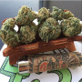 quality-medical-marijuana-strains-available-for-affordable-prices-small-0
