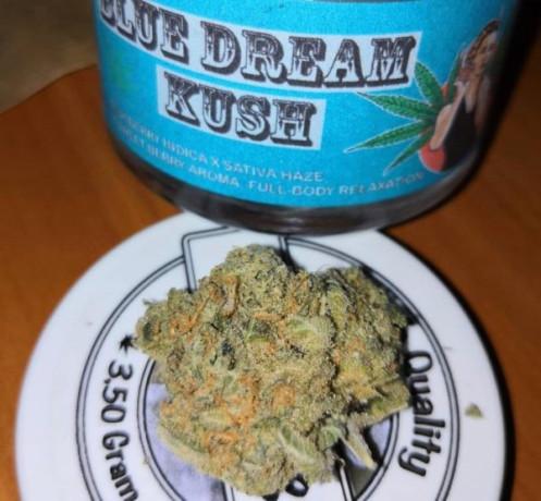 420-medicinal-cannabis-blueberry-kush-big-0