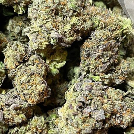 the-pluglist-cannabis-source-la-big-1