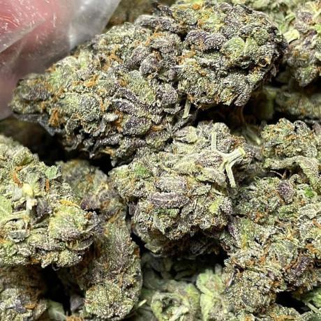 the-pluglist-cannabis-source-la-big-0