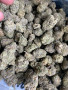 best-strains-ever-small-4