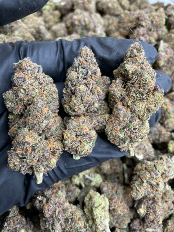 best-strains-ever-big-3
