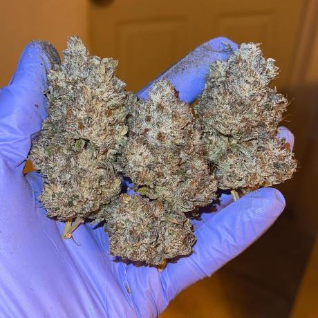 top-shelf-grade-a-medical-marijuana-big-2